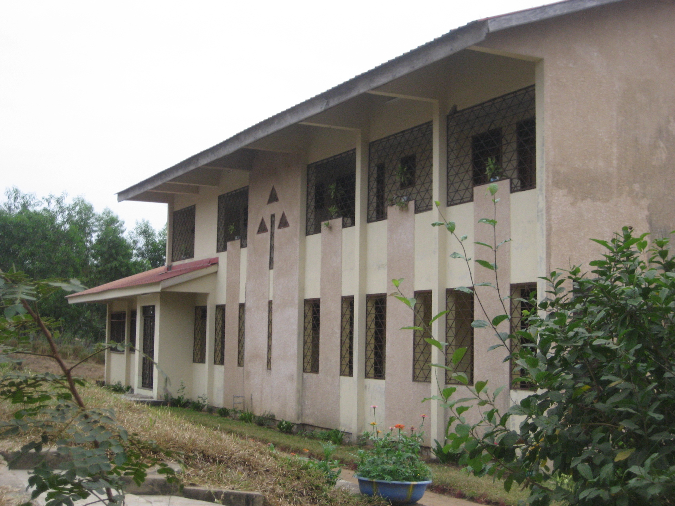 La communaut de l 39 arbre de vie kinshasa alliance pour for Acheter une maison a kinshasa